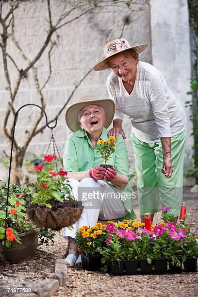 Elderly women gardening
