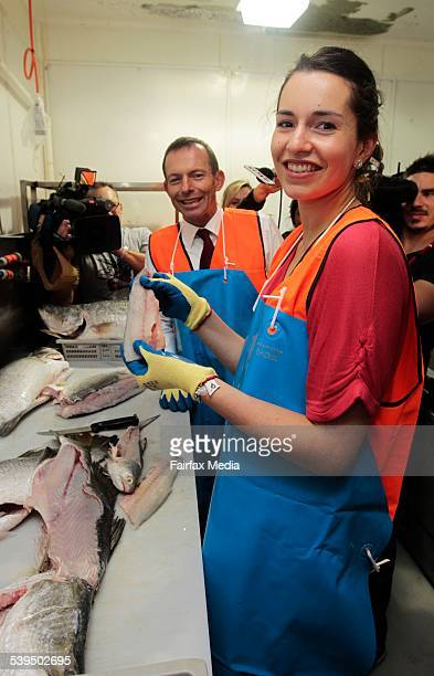 2010 Election campaign Opposition Leader Tony Abbott with his daughter Louise The pair fillets a barramundi at the Mackay Fish Market in Mackay in...