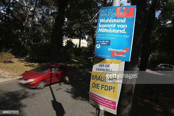 Election campaign posters of the German Free Democrats and AfD political party hang from a lamppost ahead of upcoming Brandenburg state elections on...