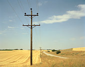 Electricity poles and power lines in rural area