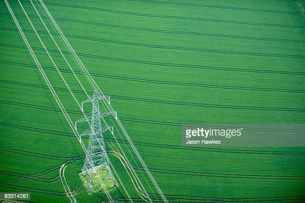 Electricity pylon in wheat field