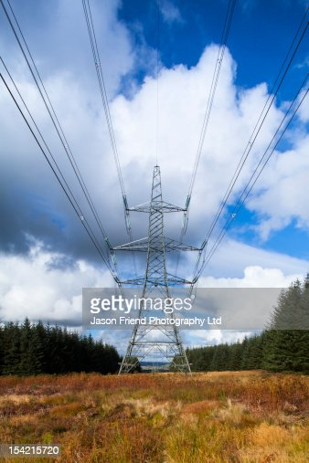 Electricity Pylons and woodland : Stock Photo