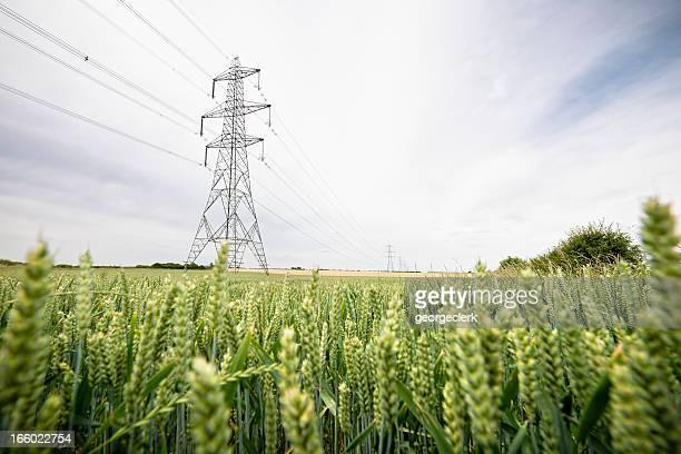 電力供給の田園地帯