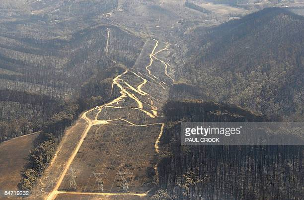 Electricity transmission lines through a charred landscape show the scale of the devastation of the wildfire which ripped through the township of...