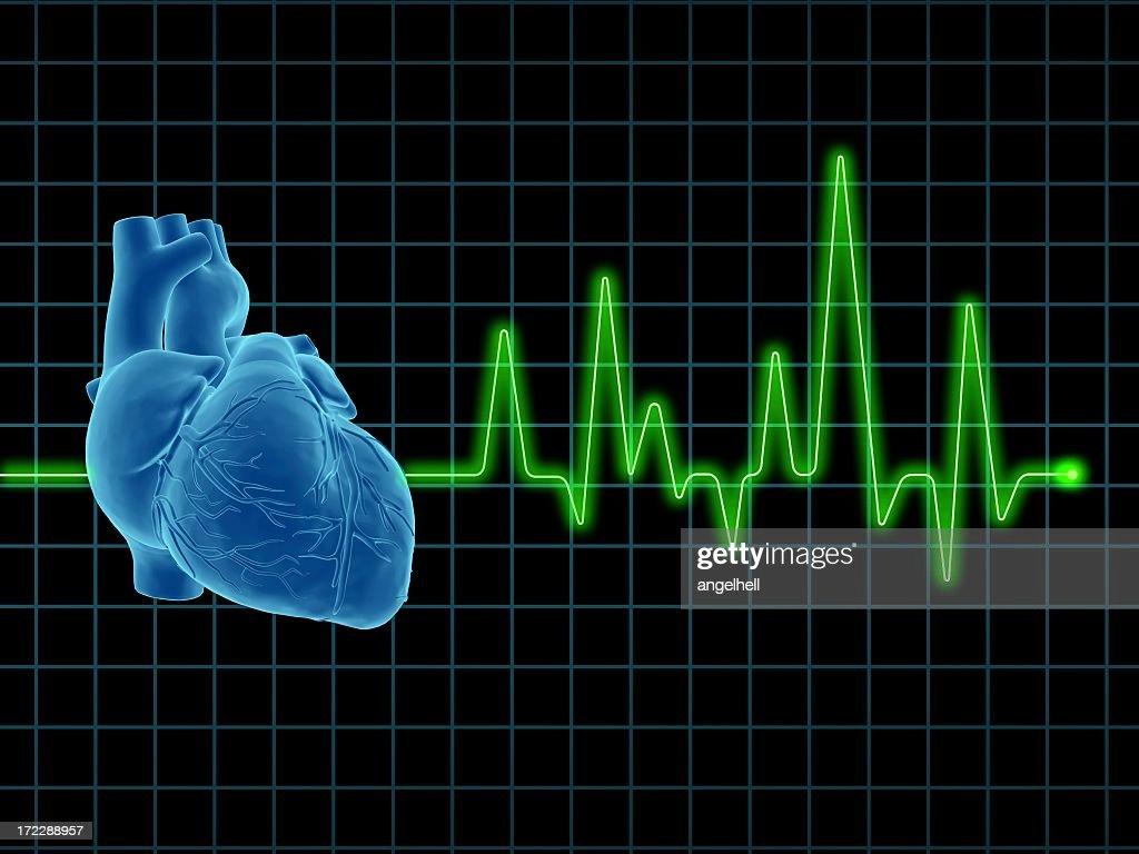 Electrocardiogram (ECG / EKG) with human heart on screen