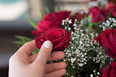 Elegant female hand with white manicure on nails. Romantic still life with a bouquet of red roses.