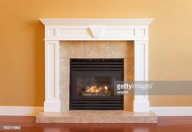 Elegant Gas Fireplace