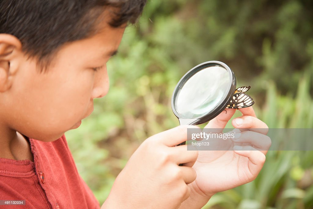 Elementary age boy enjoys discovering nature. Magnifying glass. : Stock Photo