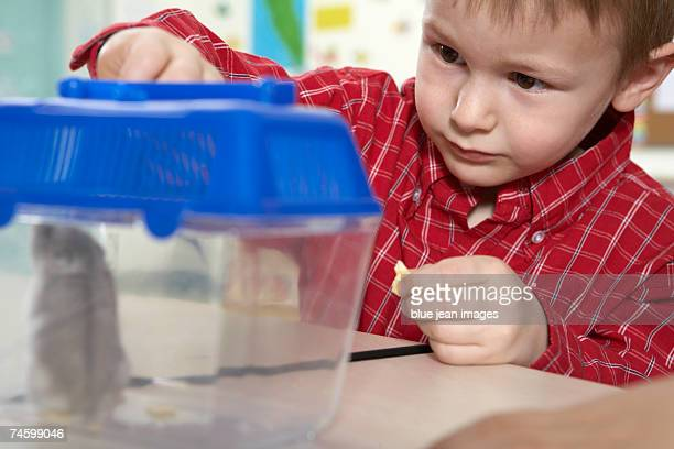 Elementary school student feeds a mouse in a cage