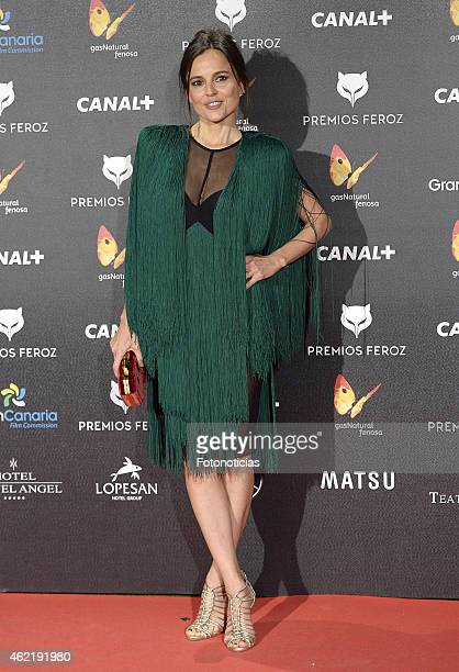 Elena Anaya attends the 2015 'Feroz' Cinema Awards at Gran Teatro Ruedo Las Ventas on January 25 2015 in Madrid Spain