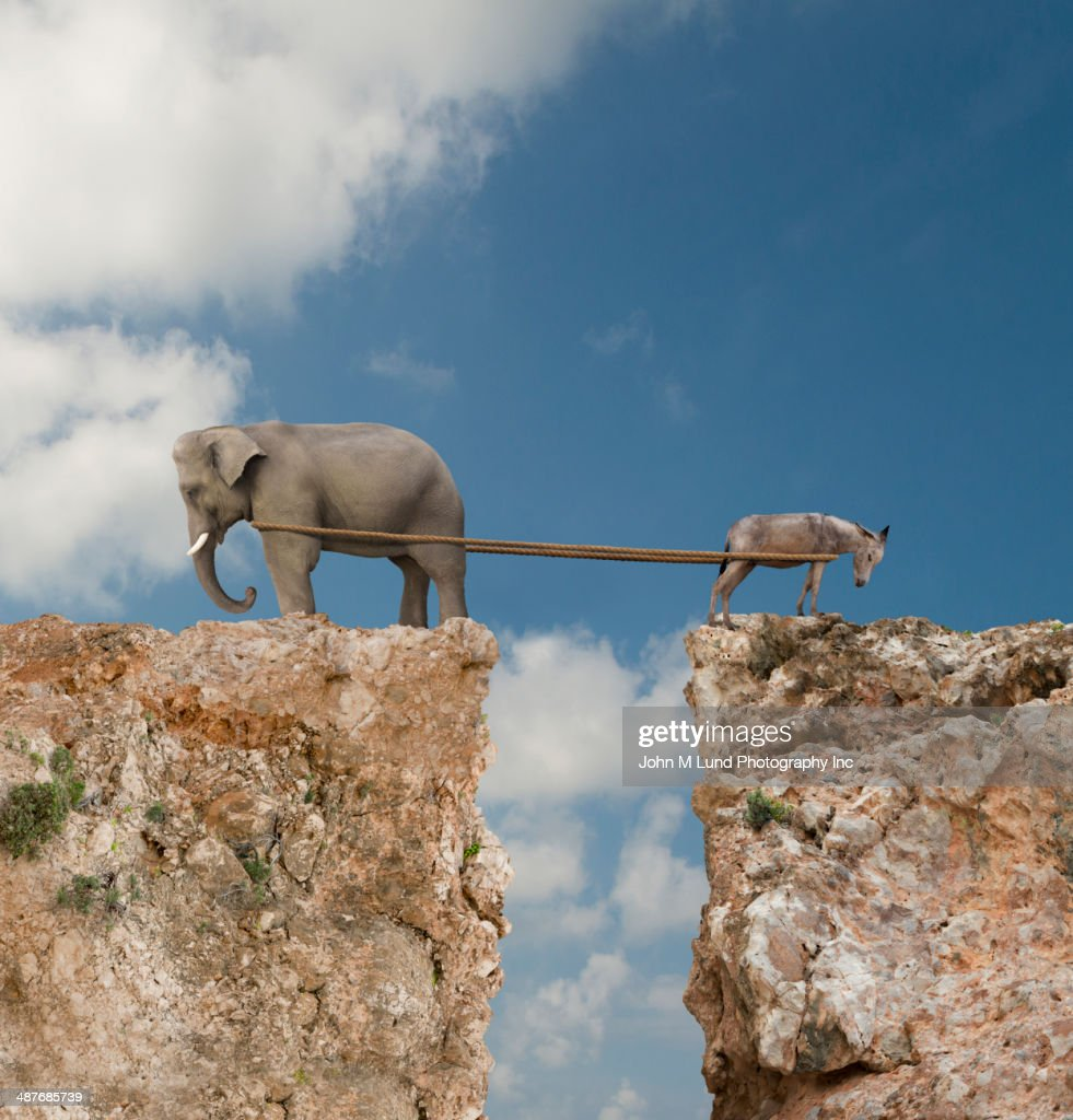 Elephant and donkey playing tug-of-war over steep cliff