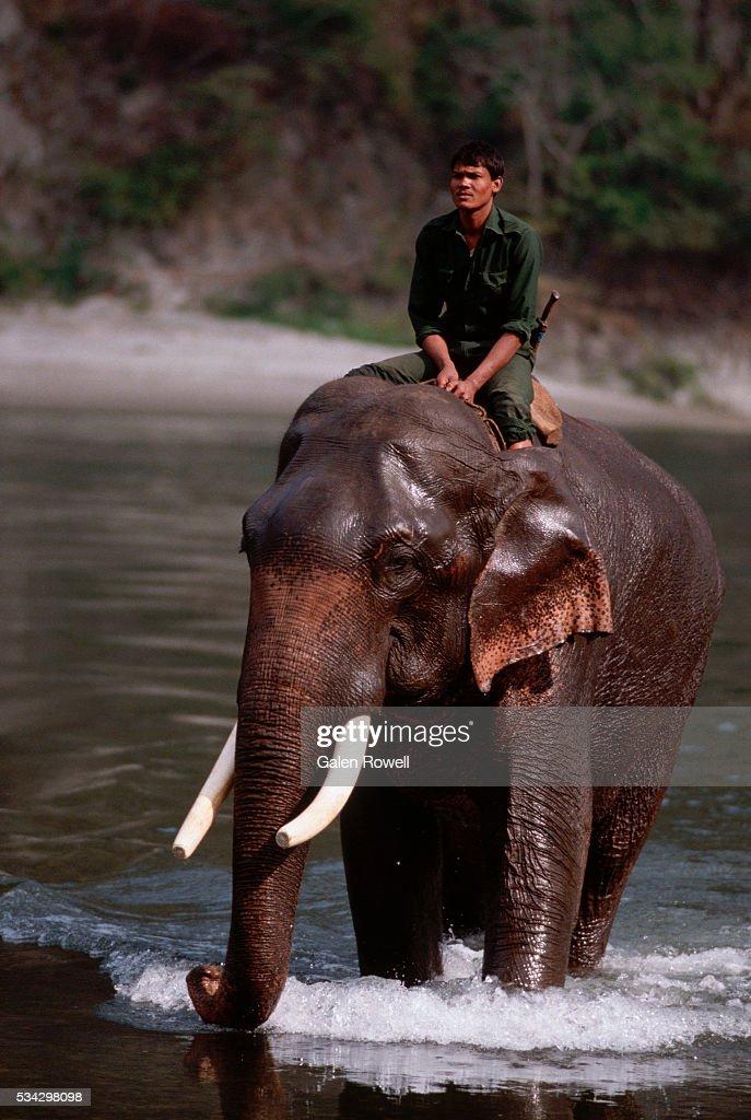 Elephant And Mahout, Bhutan