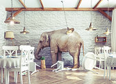 an elephant calm in a restaurant interior. photo and 3d combination concept