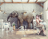 the elephant calm in a restaurant interior. photo combination and 3d concept