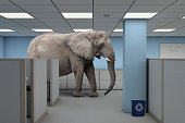 Elephant in the Room - An elephant standing in office building between rows of cubicles.