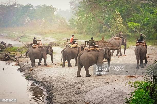 guided river safari