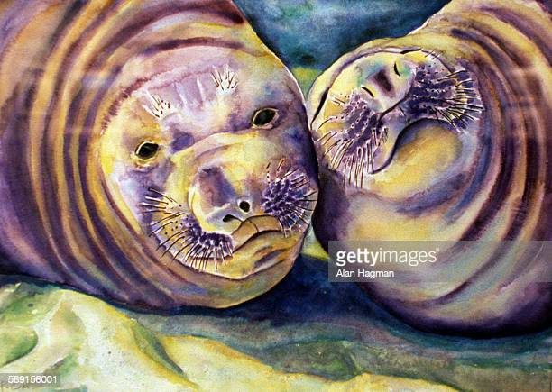 'Elephant Seals' painted by Peggy Oki is among the works on exhibit at the Channel Islands National Park visitor center The arts organization The Oak...