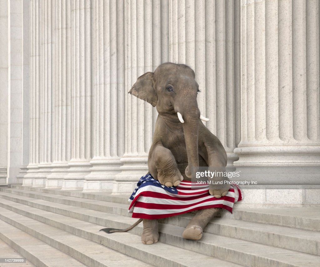 Elephant sitting steps with American flag : Stock Photo