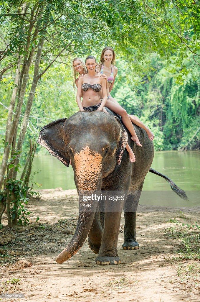 Elephant Trekking, Tourist Women on Vacation, Thailand