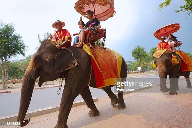 Elephants carrying tourists around Ayutthaya Historical Park.