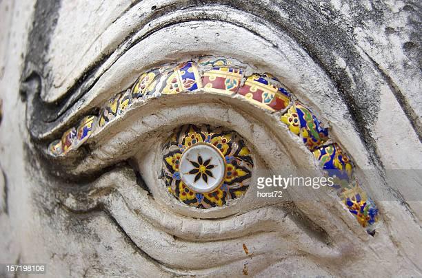 Olho-de-elefante