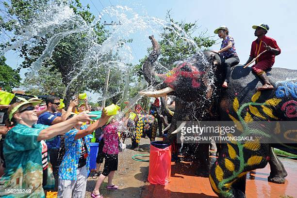 Elephants spray water at tourists during Songkran festival in Ayutthaya province on April 11 2012 Songkran is the Thai New Year which starts on April...