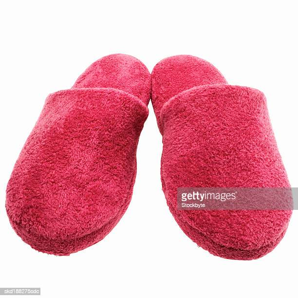 Elevated view of a pair of slippers