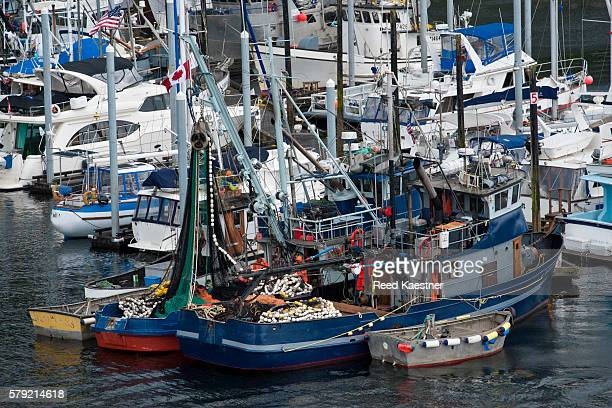 Elevated view of commercial salmon fishing boats in the harbor in Ketchikan Alaska