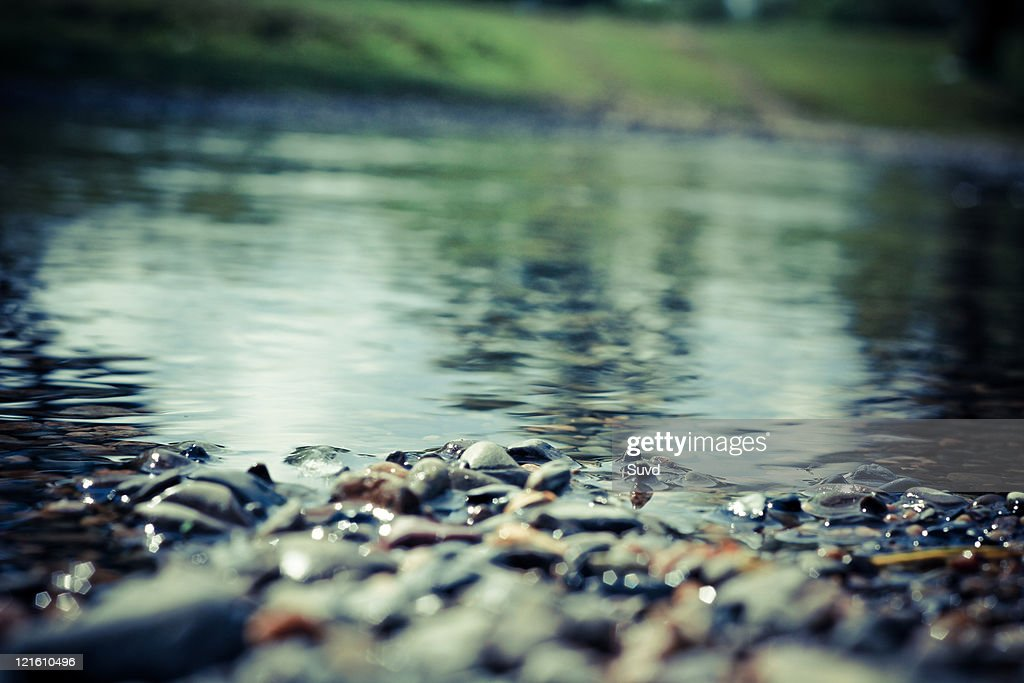 Elevated view of pebbles in water