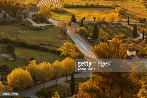 Elevated view of roadway and trees at sunrise : Stock Photo
