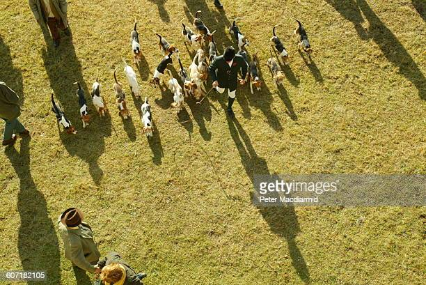 Elevated view of the master of foxhounds at a hunt Badminton England November 1 2003