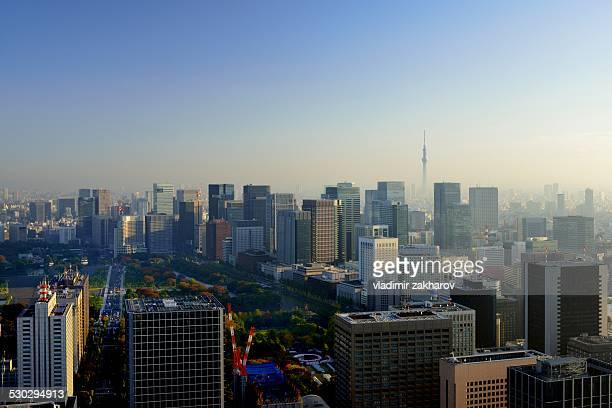 Elevated view of Tokyo Downtown at sunrise