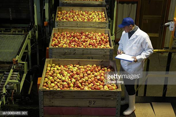Elevated view of worker controlling boxes of apples in apple processing factory
