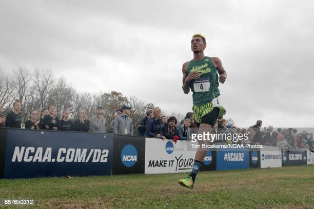 Elias Gedyon of Adams State University runs to the finish line during the Division II Men's Cross Country Championship held at the Angel Mounds on...