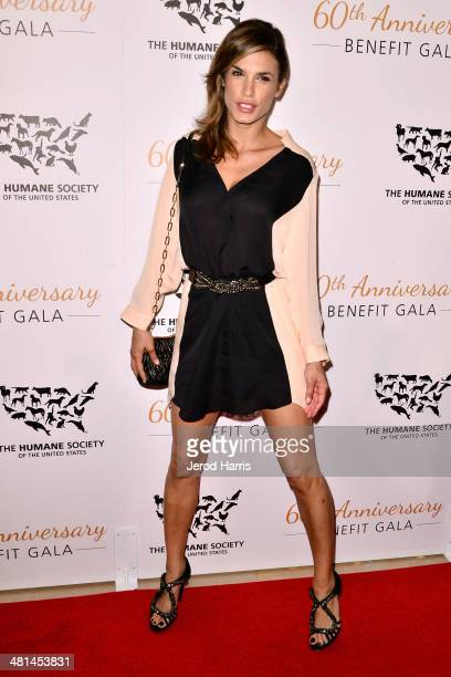 Elisabetta Canalis attends the Humane Society of the United States 60th Anniversary Benefit Gala at The Beverly Hilton Hotel on March 29 2014 in...