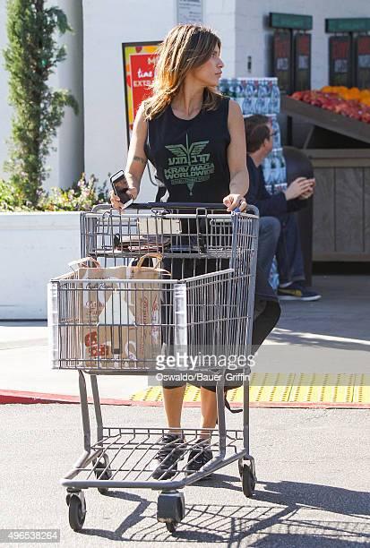 Elisabetta Canalis is seen on November 10 2015 in Los Angeles California