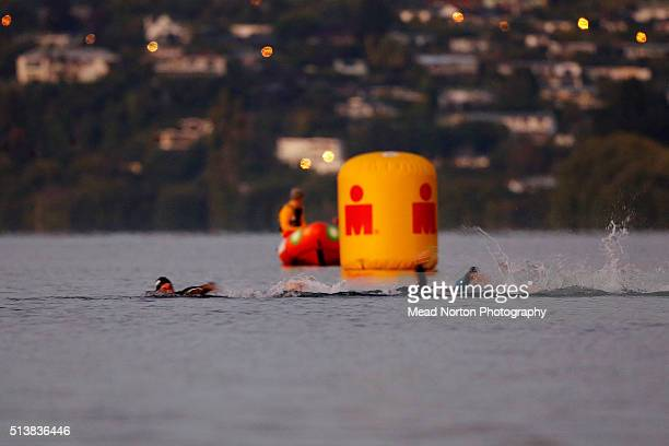 Elite women swiming in Lake Taupo during the 2016 Taupo Ironman on March 5 2016 in Taupo New Zealand
