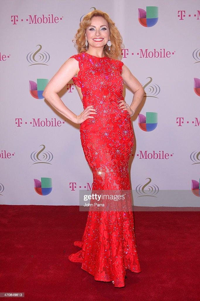 Elizabeth Alvarez attends Premio Lo Nuestro a la Musica Latina 2014 at American Airlines Arena on February 20, 2014 in Miami, Florida.