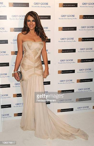 Elizabeth Hurley attends the 'Grey Goose Character CocktailsThe Elton John Aids Foundation Winter Ball' at Grey Goose Maison de Mode on October 30...