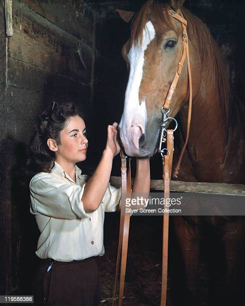 Elizabeth Taylor British actress with her horse 'The Pie' in a stable in a publicity still issued for the film 'National Velvet' USA 1944 The drama...