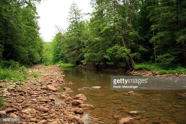 Elk river stock photos and pictures getty images for Elk river wv trout fishing