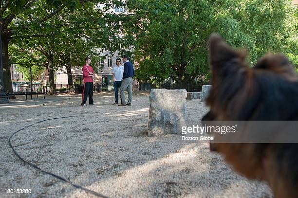 Ellie a German shepherd looked on as mayoral candidate Michael P Ross met with potential voters at Peters Park Dog Park in the South End Ross...