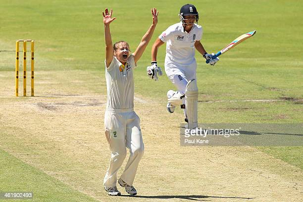 Ellyse Perry of Australia appeals for the wicket of Charlotte Edwards of England during day three of the Women's Ashes Test match between Australia...