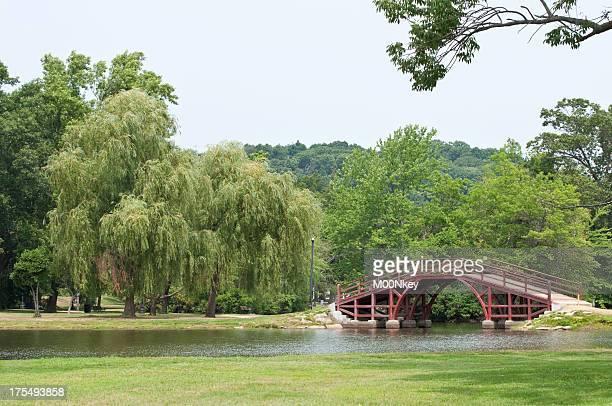 Elm Park Worcester Ma