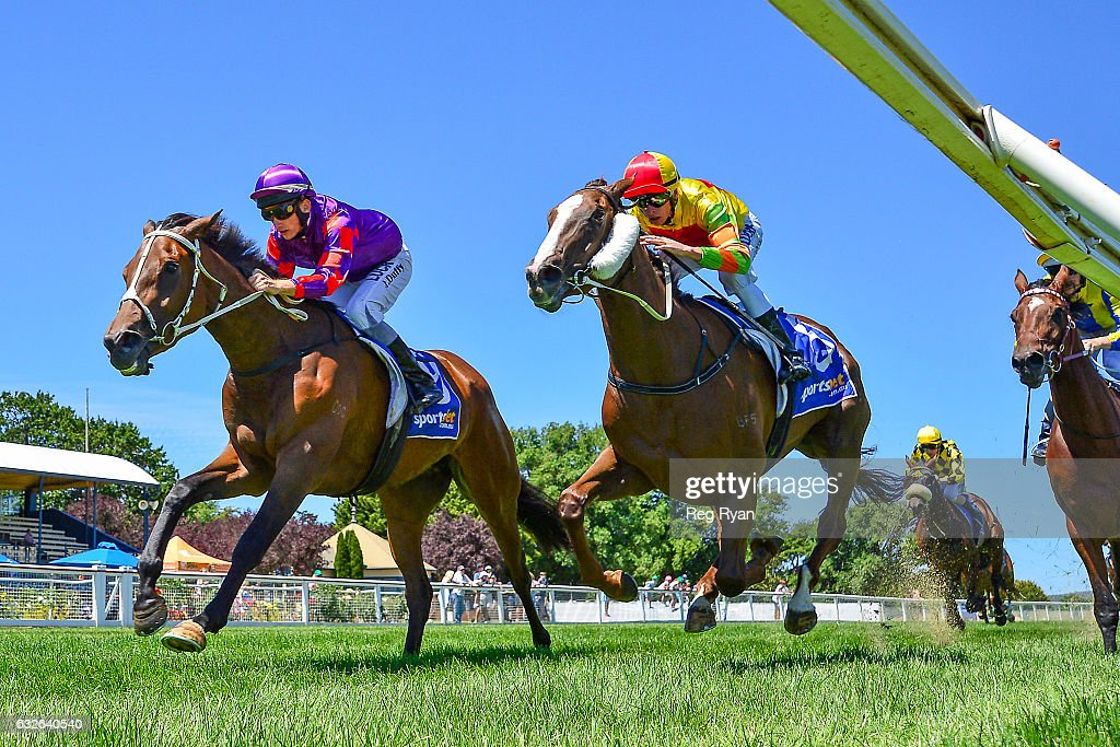 Elsaray ridden by Jake Duffy wins Last Straw Hay Supplies F&M Maiden Plate at Sportsbet-Ballarat Racecourse on January 25, 2017 in Ballarat, Australia.