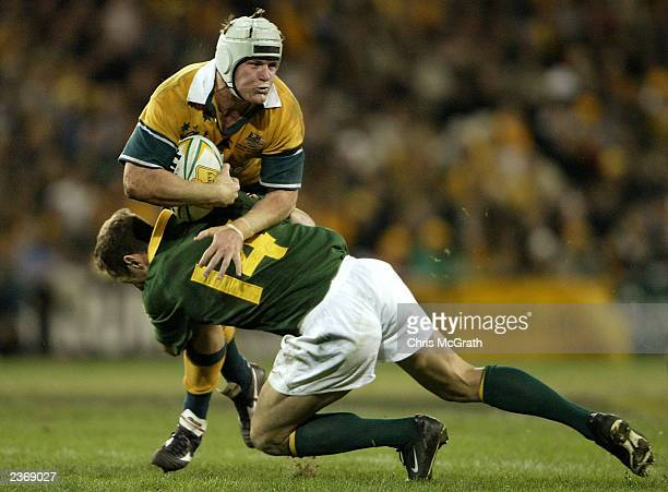 Elton Flatley of the Wallabies in action during the TriNations test match between the Australian Wallabies and South African Springboks held at...