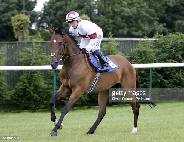Elusive Band ridden by Sam Hitchcott goes to post at Nottingham Racecourse