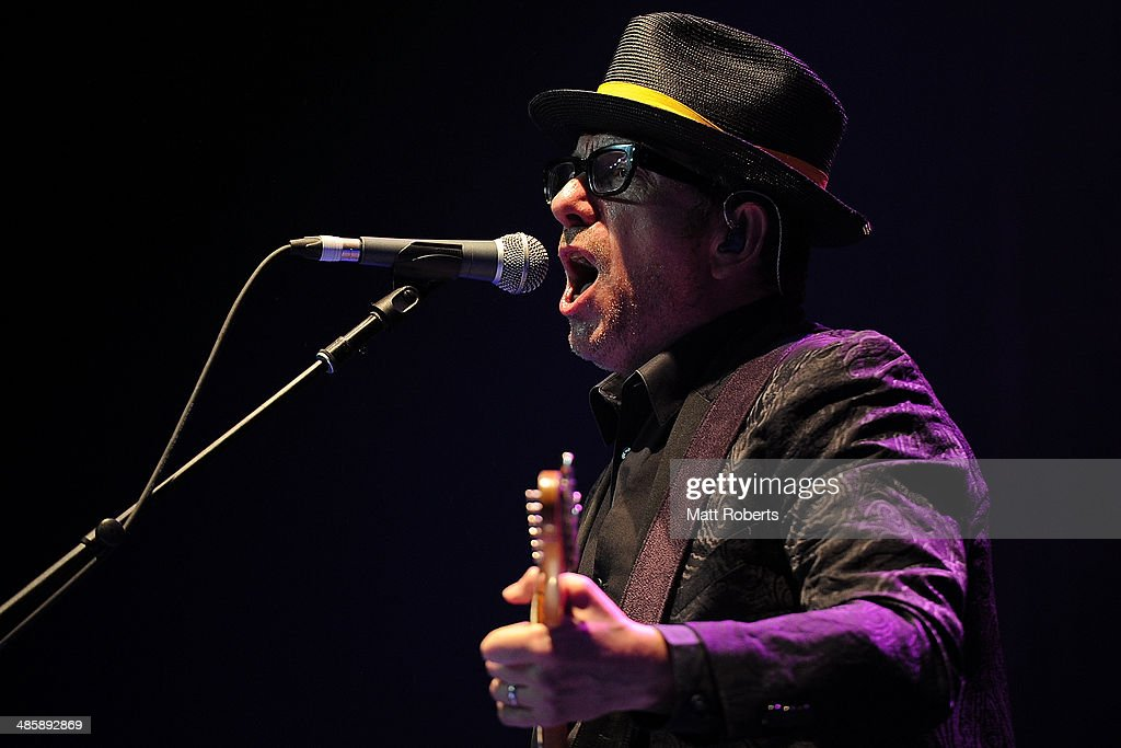 Elvis Costello and The Imposters performs live for fans at the 2014 Byron Bay Bluesfest on April 21, 2014 in Byron Bay, Australia.