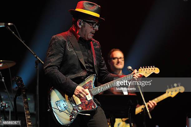 Elvis Costello and The Imposters performs live for fans at the 2014 Byron Bay Bluesfest on April 21 2014 in Byron Bay Australia