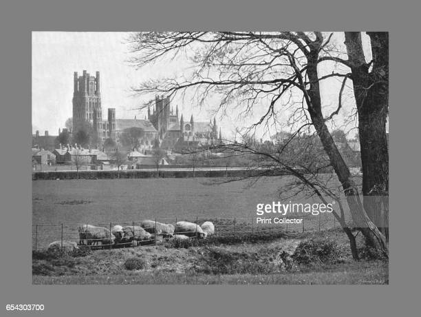 Ely Cathedral c1900 Ely Cathedral is an Anglican cathedral in the English city of Ely Cambridgeshire The cathedral has its origins in AD 672 when St...